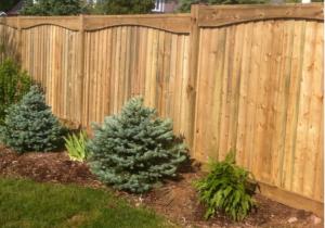 Wood fence1